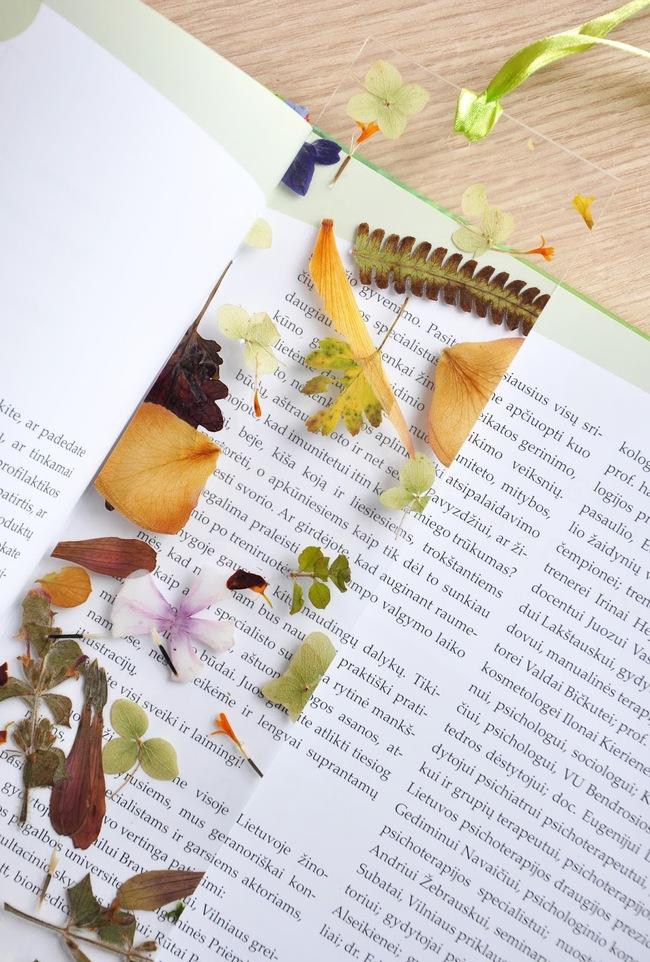 Ai hay đọc sách thì đừng bỏ qua mẫu bookmark cực đẹp từ hoa khô này - Ảnh 11.