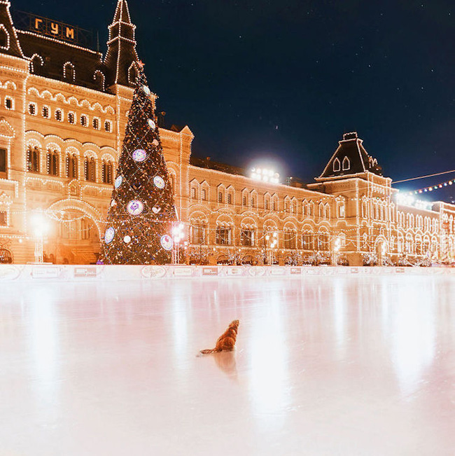 Ngỡ ngàng trước một Moscow mùa Giáng Sinh lung linh như truyện cổ tích - Ảnh 15.