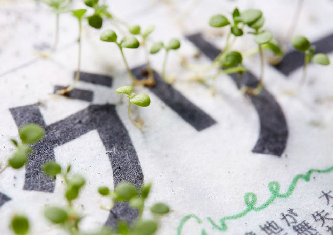 Nhật Bản: Lần đầu tiên trên thế giới một tờ báo có thể trồng ra hoa sau khi đã đọc xong - Ảnh 4.