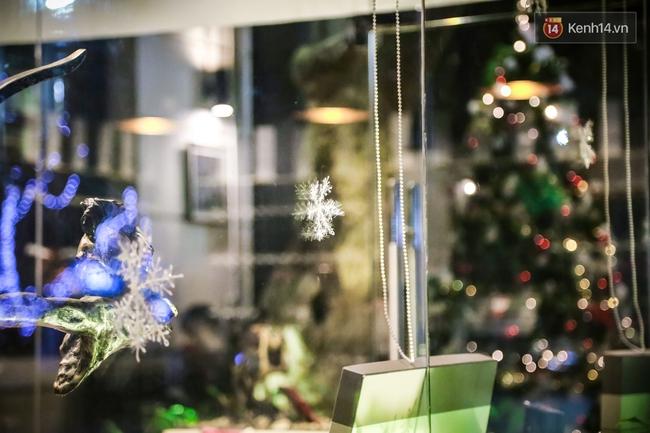 Chùm ảnh: Không khí Giáng Sinh đã ngập tràn khắp các ngõ phố Hà Nội - Ảnh 9.