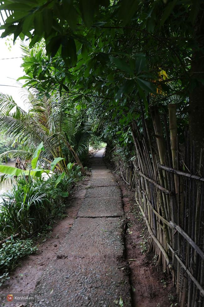 Gia cảnh nhà Tùng Sơn: Ở nhà đất, lợp mái lá, vẫn cố cho con 50 nghìn lên Sài Gòn - Ảnh 3.