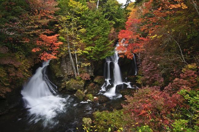 Ngắm nhìn Nhật Bản trầm mặc mà vẫn đẹp đến nao lòng mỗi độ thu sang - Ảnh 3.