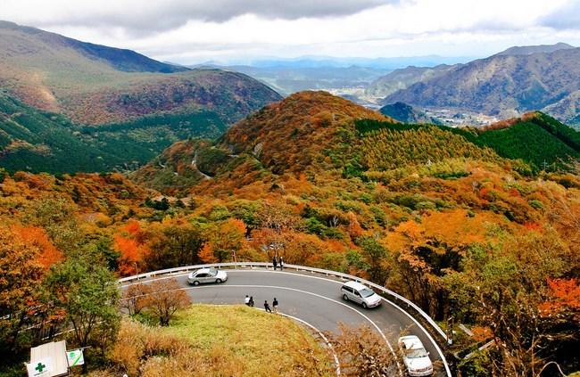 Ngắm nhìn Nhật Bản trầm mặc mà vẫn đẹp đến nao lòng mỗi độ thu sang - Ảnh 4.