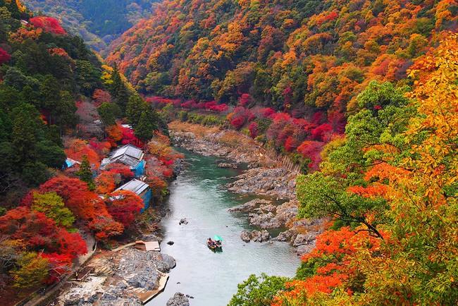 Ngắm nhìn Nhật Bản trầm mặc mà vẫn đẹp đến nao lòng mỗi độ thu sang - Ảnh 6.