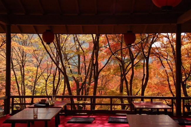 Ngắm nhìn Nhật Bản trầm mặc mà vẫn đẹp đến nao lòng mỗi độ thu sang - Ảnh 8.