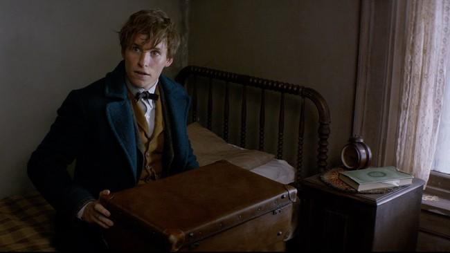 Fantastic Beasts and Where to Find Them vượt mặt Doctor Strange để công phá Bắc Mỹ - Ảnh 2.