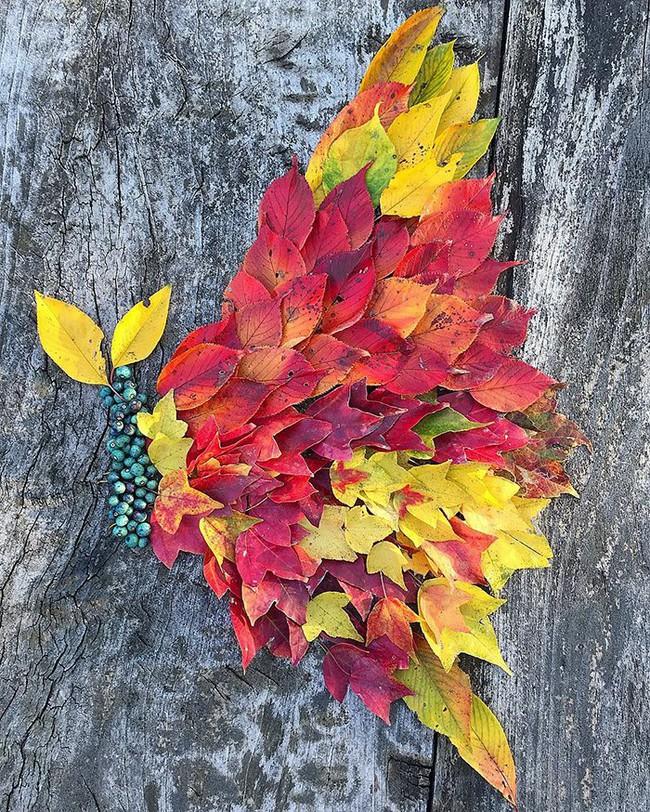 Tuyển tập những bức tranh tuyệt đẹp được vẽ nên từ lá vàng rơi và chổi - Ảnh 7.