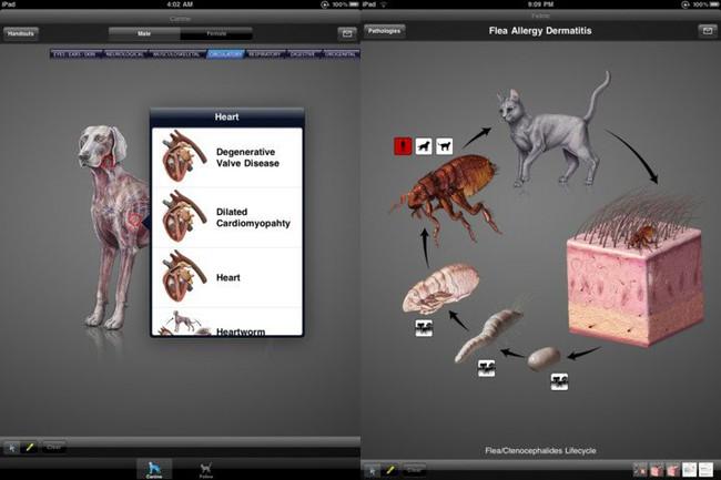 7 ứng dụng trên iPhone đắt tới mức khó tin - Ảnh 5.