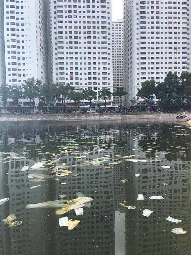 Hà Nội: Bao cao su nổi kín mặt hồ Linh Đàm - Ảnh 3.