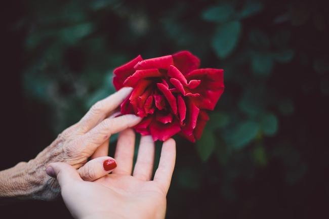 Người đàn ông định gửi điện hoa về cho mẹ, nhưng hành động của một cô bé đã khiến ông phải suy nghĩ lại - Ảnh 1.