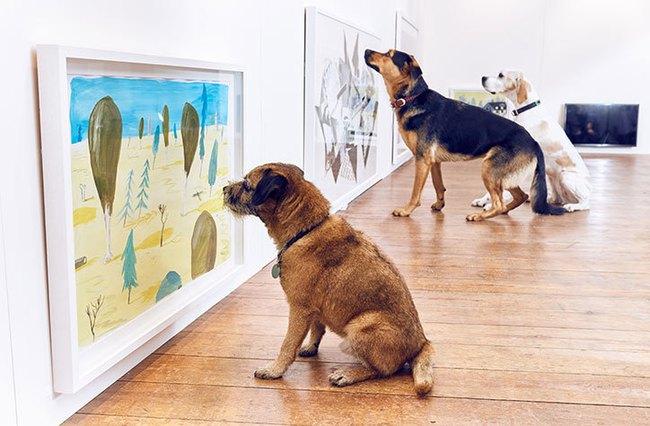Ghé thăm triển lãm nghệ thuật dành cho chó đầu tiên trên thế giới - Ảnh 6.