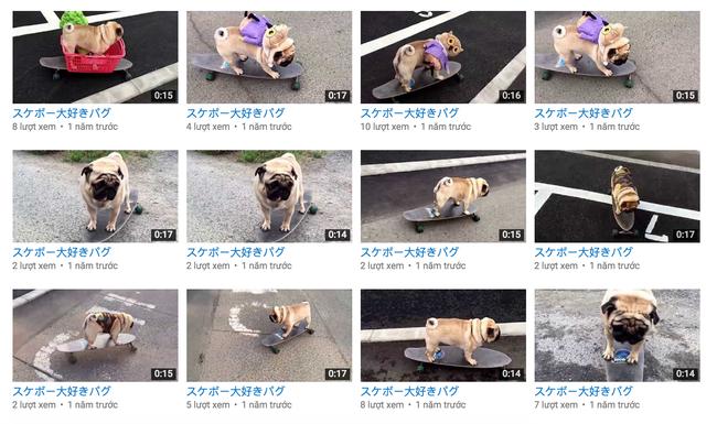 Chăm chỉ tải cả nghìn clip lên YouTube, đổi lại chỉ vài lượt xem - Ảnh 2.