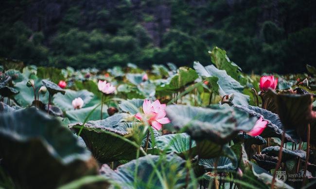 5 địa điểm sẽ trở thành thiên đường du lịch cho giới trẻ Việt trong năm tới - Ảnh 30.