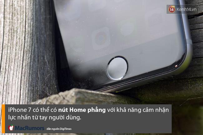 Chân dung những chiếc iPhone nhạt nhẽo Apple sắp sửa ra mắt - Ảnh 4.