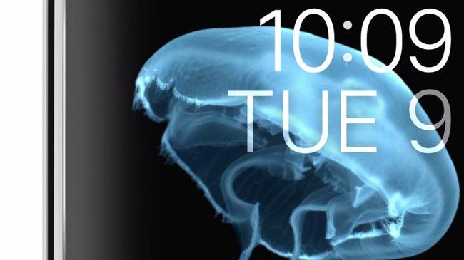 8 chi tiết siêu nhỏ cho thấy Apple tỉ mỉ tới mức khó tin như thế nào - Ảnh 8.