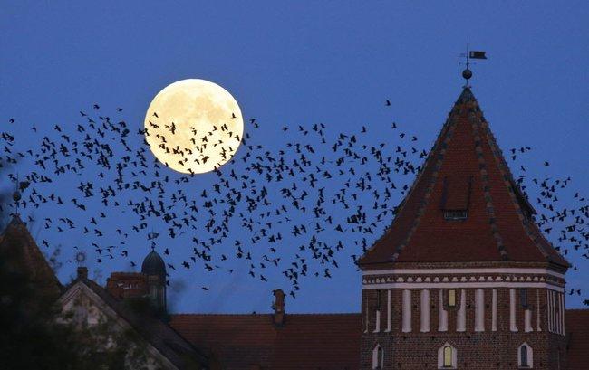 Những địa điểm tốt nhất để ngắm siêu trăng thế kỷ ngày 14/11 này - Ảnh 3.
