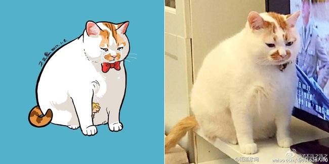 Nếu yêu mèo, bạn sẽ muốn phát điên trước chùm tranh siêu cấp dễ thương này - Ảnh 1.