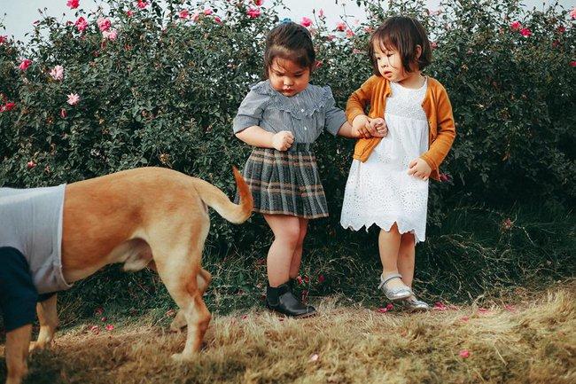 Khuôn mặt sợ chó siêu đáng yêu của cô bé má phính Hà Nội ăn đứt Vô Diện lạnh lùng - Ảnh 5.