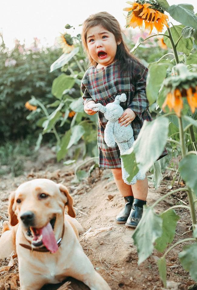 Khuôn mặt sợ chó siêu đáng yêu của cô bé má phính Hà Nội ăn đứt Vô Diện lạnh lùng - Ảnh 7.