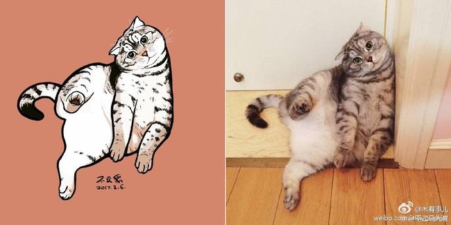 Nếu yêu mèo, bạn sẽ muốn phát điên trước chùm tranh siêu cấp dễ thương này - Ảnh 21.