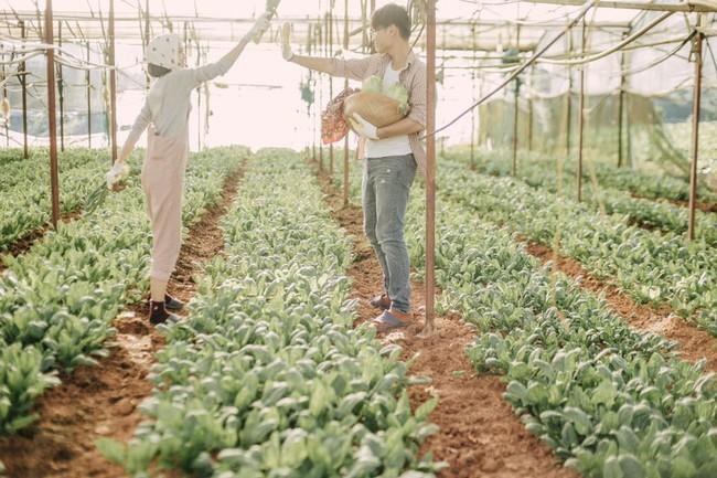 Chỉ cần yêu nhau thật nhiều thì ảnh cưới chụp ở... vườn rau cũng khiến người ta xuýt xoa - Ảnh 18.