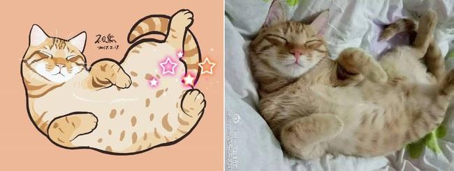 Nếu yêu mèo, bạn sẽ muốn phát điên trước chùm tranh siêu cấp dễ thương này - Ảnh 23.