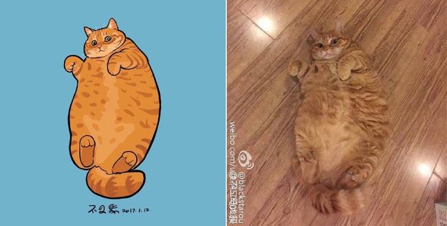 Nếu yêu mèo, bạn sẽ muốn phát điên trước chùm tranh siêu cấp dễ thương này - Ảnh 25.