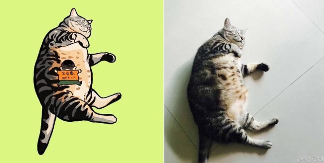 Nếu yêu mèo, bạn sẽ muốn phát điên trước chùm tranh siêu cấp dễ thương này - Ảnh 7.