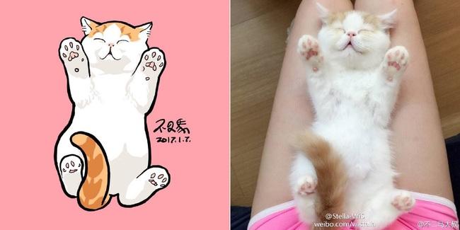 Nếu yêu mèo, bạn sẽ muốn phát điên trước chùm tranh siêu cấp dễ thương này - Ảnh 9.