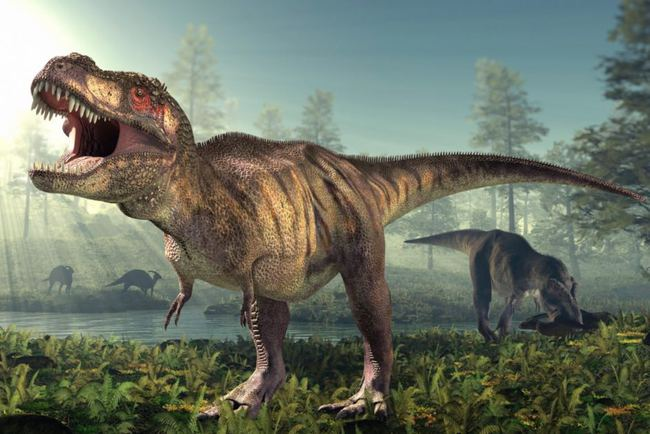 Khủng long bạo chúa T-rex cũng biết yêu - nghiên cứu gây shock của các nhà khoa học - Ảnh 3.