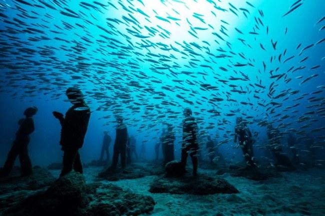 Vùng biển khiến ai cũng phải lạnh người khi nhìn thấy cảnh tượng ở dưới đáy - ảnh 2