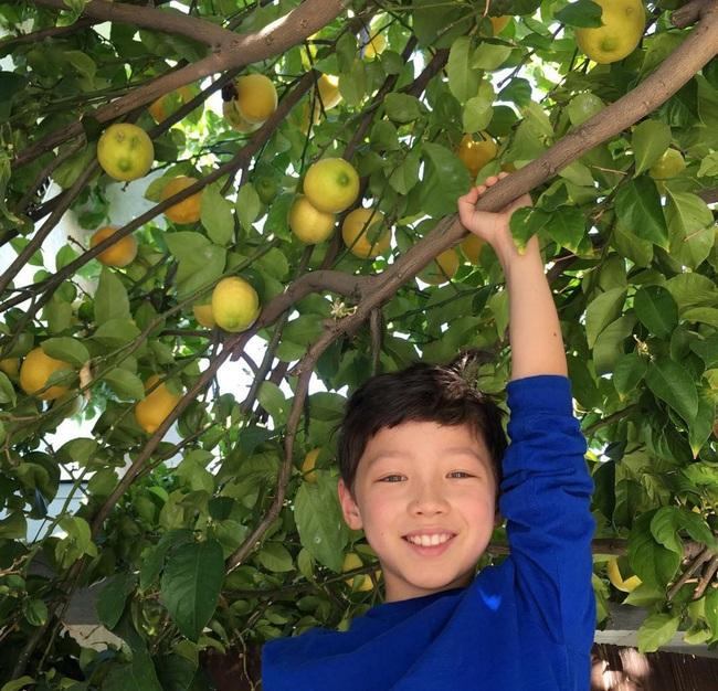 Cậu bé 9 tuổi nói thạo 4 thứ tiếng đốn tim dân mạng bằng vẻ đẹp lai ngọt ngào - Ảnh 11.