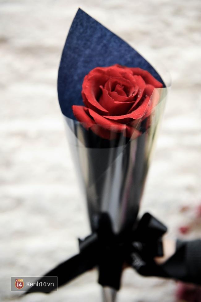 Đừng chỉ biết mỗi hoa hồng, Valentine năm nay còn rất nhiều loài hoa cực xinh để bạn tặng nàng! - Ảnh 19.