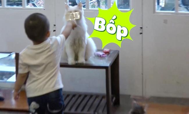 Đăng Khôi hốt hoảng khi con trai bỏ cả thức ăn của mèo vào miệng - Ảnh 10.
