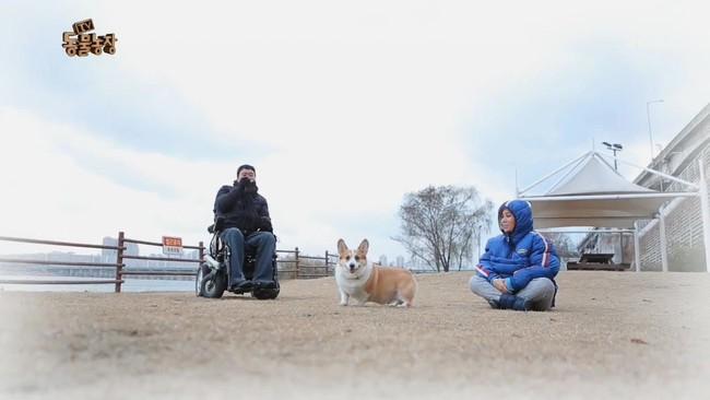 2 tháng sau ngày chú chó cưng qua đời, phép màu đã đến với cặp vợ chồng nghệ sĩ Hàn - Ảnh 8.