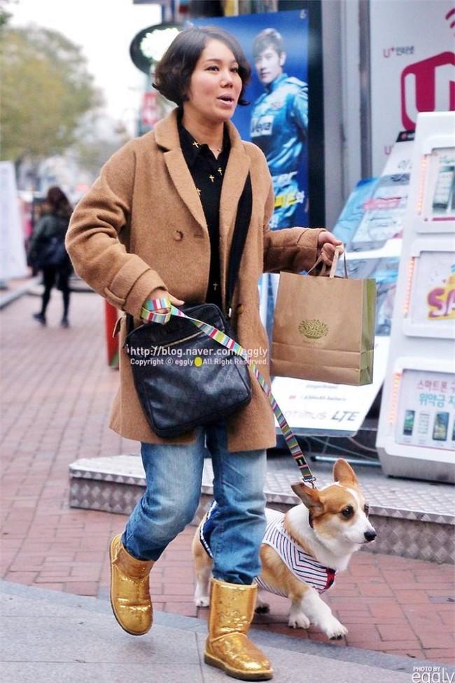 2 tháng sau ngày chú chó cưng qua đời, phép màu đã đến với cặp vợ chồng nghệ sĩ Hàn - Ảnh 6.