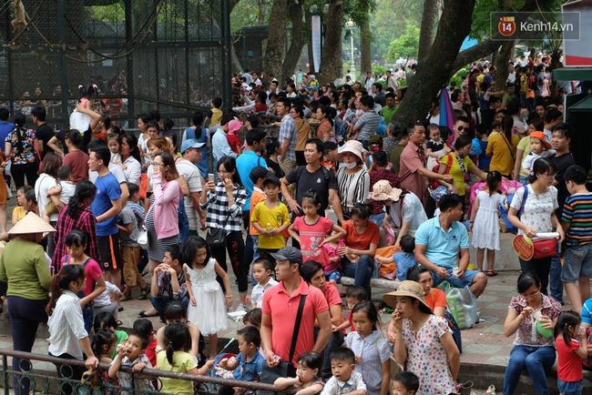 Hà Nội: Biển người chen chân ở vườn thú Thủ Lệ, ngồi la liệt trên bãi cỏ dịp nghỉ lễ 30/4 - Ảnh 10