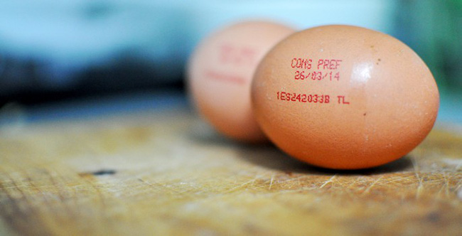 Không chỉ người mà cả… trứng gà cũng có chứng minh thư, bạn biết không? - Ảnh 3.
