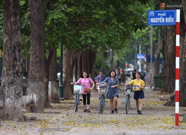 Cuối tuần, chị em áo dài váy hoa kéo nhau đi pose ảnh ở con đường lá vàng Phan Đình Phùng - Ảnh 2.