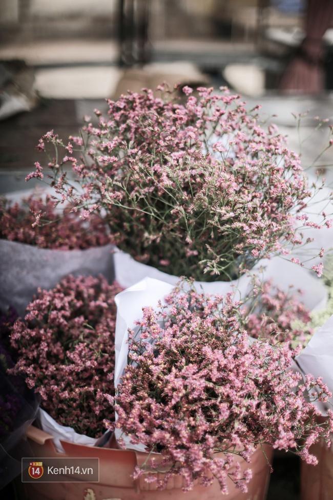 Đừng chỉ biết mỗi hoa hồng, Valentine năm nay còn rất nhiều loài hoa cực xinh để bạn tặng nàng! - Ảnh 9.