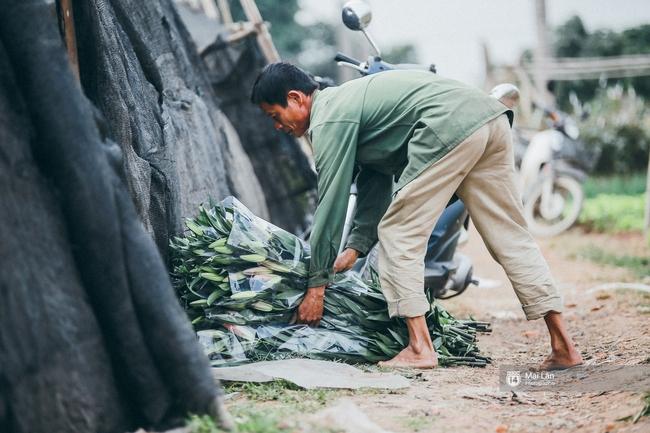 Mùa đông quá ngắn, bạn buồn vì không được mặc đồ lạnh, còn với các làng hoa ở Hà Nội - họ mất Tết! - Ảnh 6.