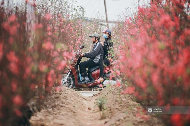 Mùa đông quá ngắn, bạn buồn vì không được mặc đồ lạnh, còn với các làng hoa ở Hà Nội - họ mất Tết! - Ảnh 8.