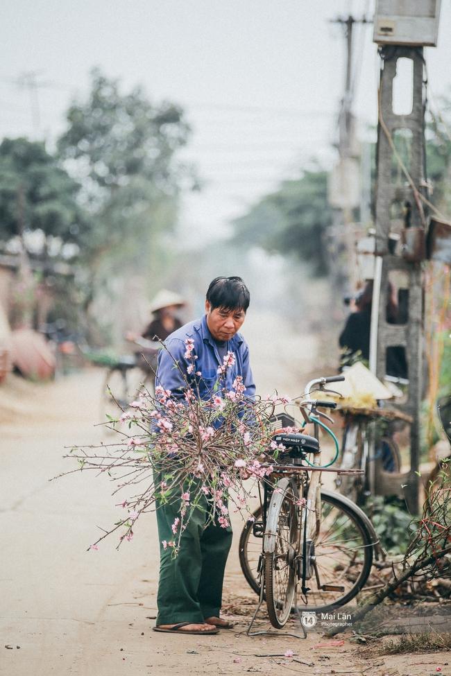 Mùa đông quá ngắn, bạn buồn vì không được mặc đồ lạnh, còn với các làng hoa ở Hà Nội - họ mất Tết! - Ảnh 10.