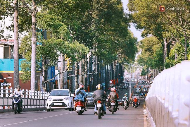Có những ngày như thế: Sài Gòn không còi xe, khói bụi và không ùn tắc lúc 5 giờ chiều - Ảnh 9.