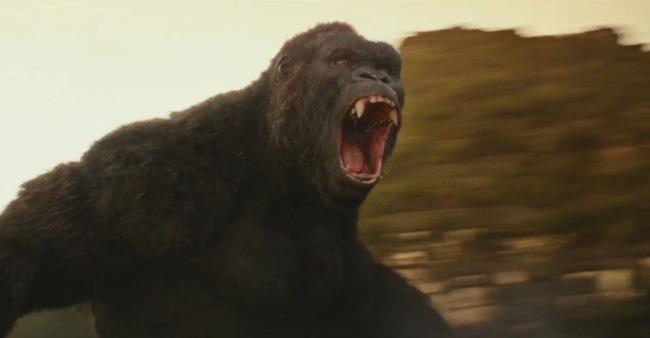 Kong - Vị vua quyền lực của nền điện ảnh Hoa Kỳ - Ảnh 1.