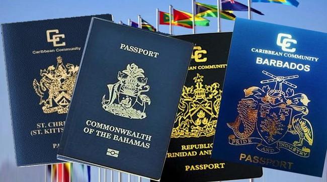 Nếu giàu nứt đố đổ vách, bạn thậm chí còn có thể mua tư cách công dân tại các nước này - Ảnh 5.