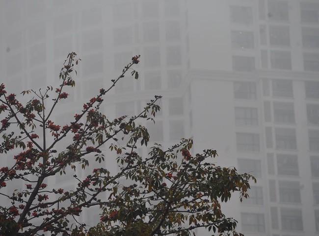 Chùm ảnh: Hà Nội mờ ảo trong sương mù dày đặc ngày cuối tuần - Ảnh 1.