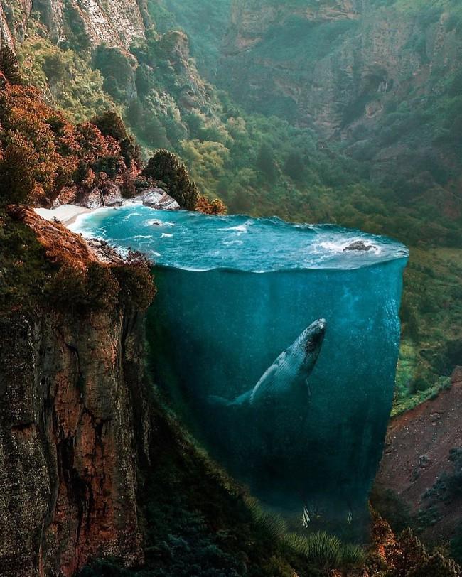 Thế giới nửa thực nửa mơ đầy ấn tượng qua bộ ảnh Photoshop diệu kì - Ảnh 1.