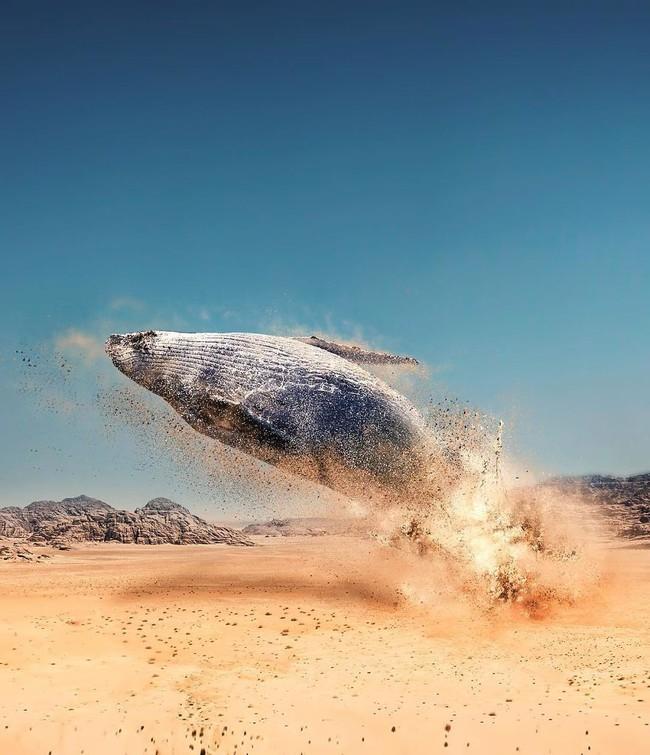Thế giới nửa thực nửa mơ đầy ấn tượng qua bộ ảnh Photoshop diệu kì - Ảnh 6.