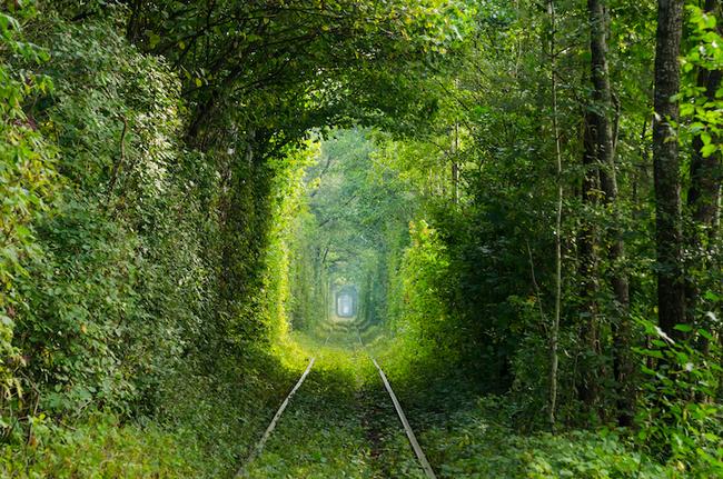 Ngắm nhìn 10 con đường tự nhiên đẹp nhất thế giới - Ảnh 3.